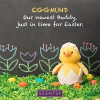 Eggmund the Chick the newest Scentsy buddy!!!!!