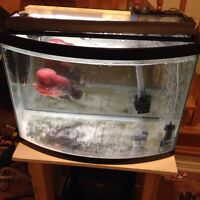 30  gallons  front bowl fish tank with stand and lid+  fluval.