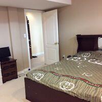 Spacious 1 Bedroom Basement in Brampton