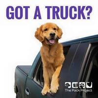 Do you love Dogs? We need volunteers with trucks