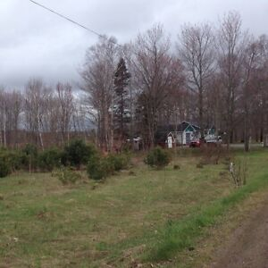 2 acre lot priced to sell! Worth 20k selling for 15k