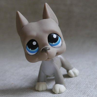 Grey Great Dane pubby dog LPS mini Action Figures #184 LITTLEST PET SHOP
