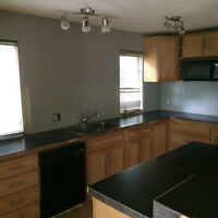 Kitchen Cabinets (lots) $20 - must be uninstalled by buyer