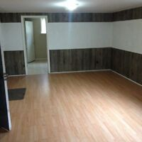 1 bed room basement apartment for rent