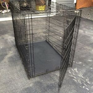 XXL wire  Dog  crate for sale .