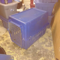 Crate for large dog