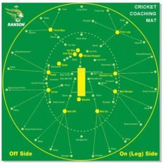 Cricket Player/Private Coach