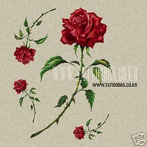 Temporary-Tattoo-ROSE-TFTPL004