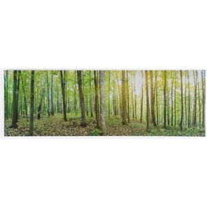 Jysk Printed artwork on canvas with wooden frame. FOREST