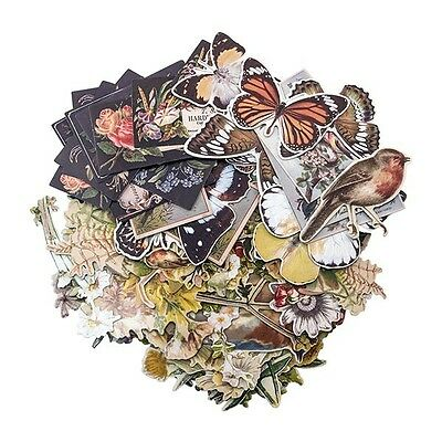 Tim Holtz Idea-ology BOTANICAL Layers Paperie TH93554 2017