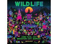 Wildlife festival cheap tickets weekend VIP day wild life Jess glynne fat boy slim