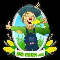 MrCorn Needs Staff ASAP