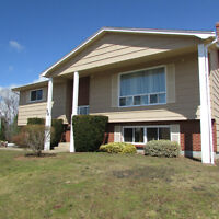 Tons of Space, Amazing Home Near NSCC in Kentville