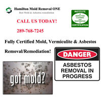 Professional Certified Mold, Asbestos, Vermiculite removal