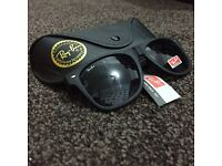 Rayban Sunglasses / Shades With Cover