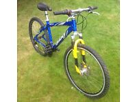 Giant Rock SE mountain bike