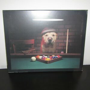 Dog and Billiard picture