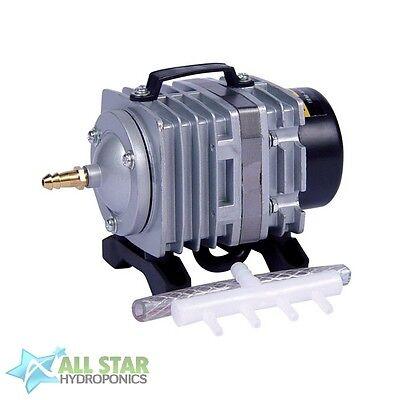 EcoPlus Commercial Air Pump 1 w/Air Divider ...