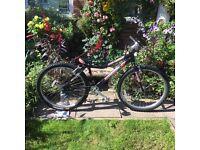 Reefer Trials Bike