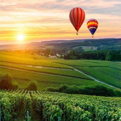 Hot Air Balloon Prop (Field Scene Hot Air Balloon Photography Background 10x10ft Studio Backdrop)