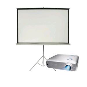 "Projector Screen 80-100"""