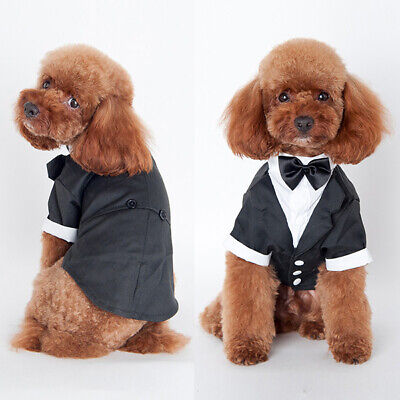 Smoking Fliege Anzug Party Hochzeit Kleid Pet Puppy Kostüm (Hunde Smoking Kostüm)