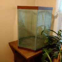 Hexagonal fish tank in Yorkton