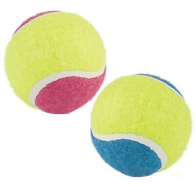 Ancol Mega Tennis Ball Dog Toy Large 10cm Various Colour for Giant Dogs to Chase