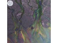 An Awesome Wave. Alt-J Vinyl LP record BRAND NEW (includes free MP3 download)