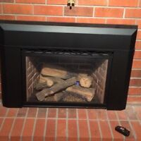 Natural Gas direct vented fireplace insert and blower