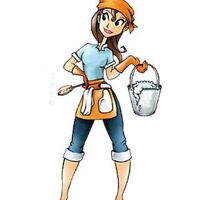 Maid-2-Order Cleaning Services