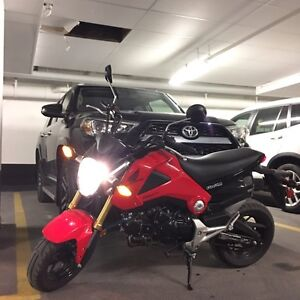 2014  Red Honda Grom 125 low