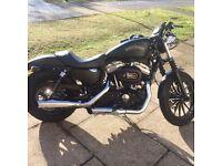 Harley Davidson iron xl 883