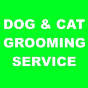 Professional dog & cat grooming in Newmarket / Aurora