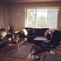 Amazing 3.5 downtown furnished