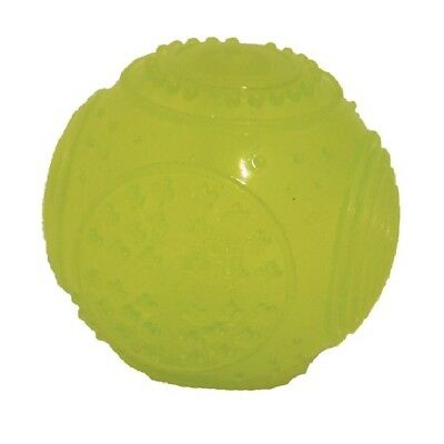 Rosewood Glow in the Dark Ball, Great Throw & Retrieve Game Dog Toys w/ Squeaker