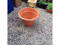 Free large plastic garden planter plant pot
