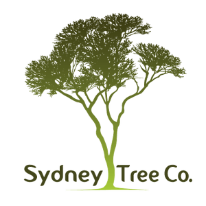 Sydney Tree Company Ryde Ryde Area Preview