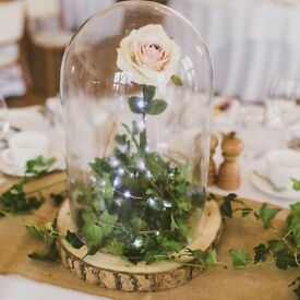 Wedding glass dome