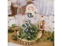 Wedding glass dome
