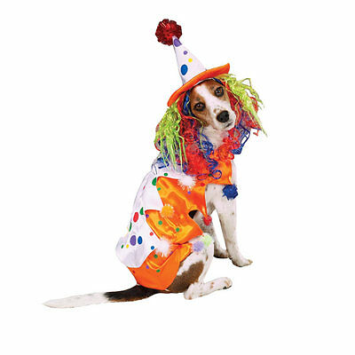 Zack & Zoey CLASS CLOWN Dog Costume Colorful Hat w/Wig Easy On/Off Closures  - Wig On Dog