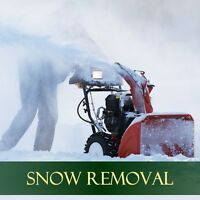 NW Professional Lawn Care, Core Aeration &a Snow Removal ❄️