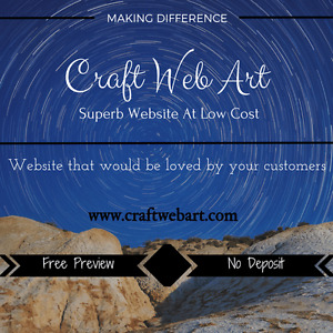 Premium quality wordpress website for $299.Zero Deposit!!!
