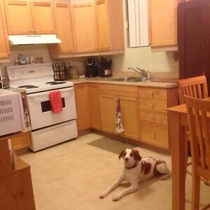 2Bd Lw Deluxe Only $500 1st Month Pets Allowed!