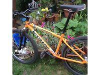 Kona Blast Retro Mountain bike project