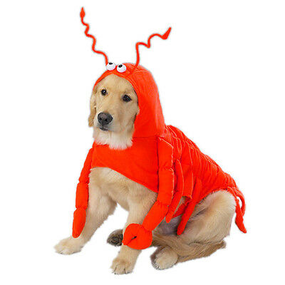 Casual Canine Lobster Paws Dog Halloween Costume Pet costumes XS-XXL](Lobster Costume Halloween)