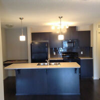 Windermere Condo For Sale/Rent