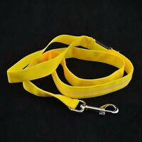New led dog leash