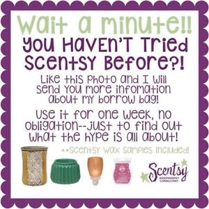 Scentsy Borrow Bag - Try the System for Free