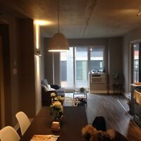 Beautiful 2 bedroom apartment in Griffintown